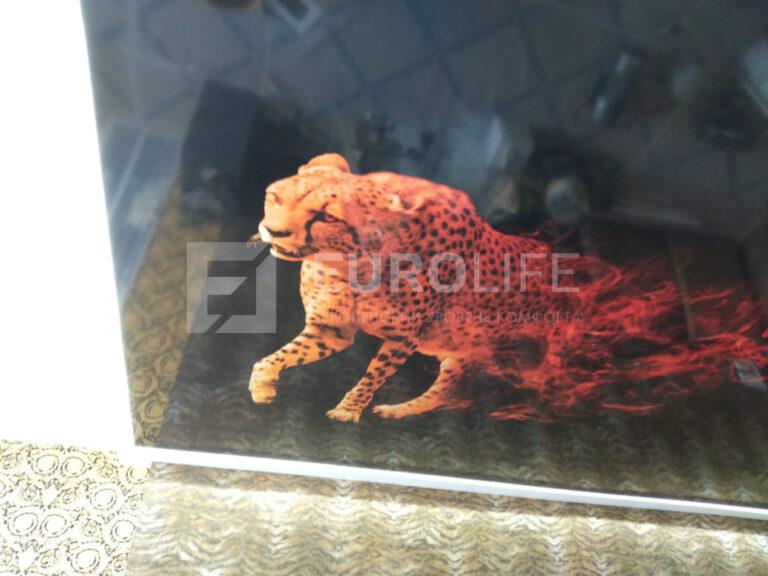 Фотопечать леопарда - на черном фоне очень много нюансов печати