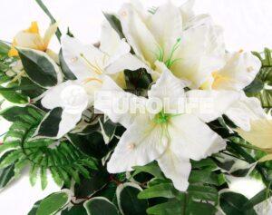 lilii 4