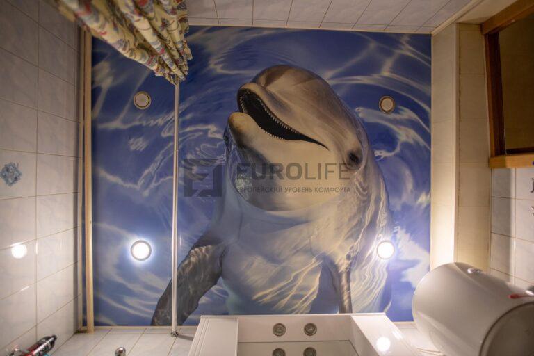 потолок с фотопечатью дельфина в ванную