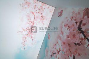 потолок с подсветкой фотопечати